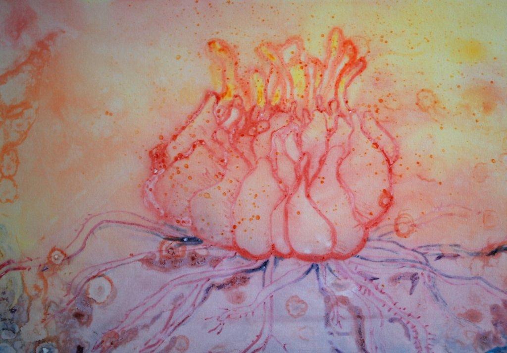 root in bloom
